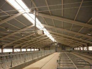 Обследование конструкции бетонного пола помещения доильного и родильного отделения фермы в Калужской области.